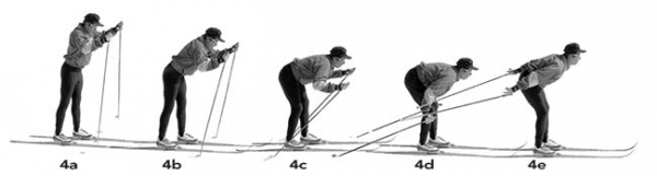 Double poling skiing